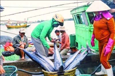 Tín dụng rốt ráo hỗ trợ ngư dân