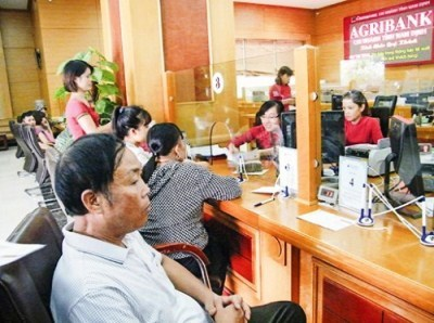 Agribank Nam Định: Cho vay hộ, đổi thay kinh tế