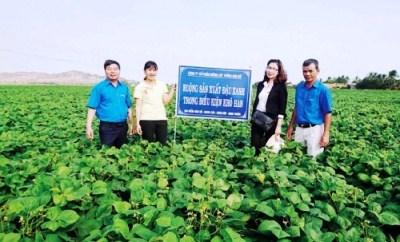 Agribank Ninh Thuận trực tiếp hỗ trợ cho doanh nghiệp vay vốn theo Nghị quyết 14