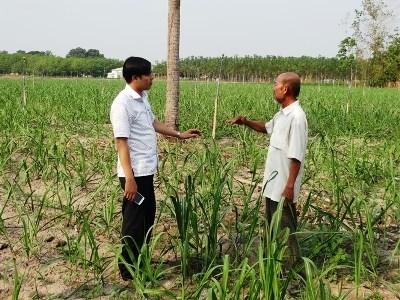 Agribank Tây Ninh giúp hàng ngàn hộ nông dân thoát nghèo và làm giàu