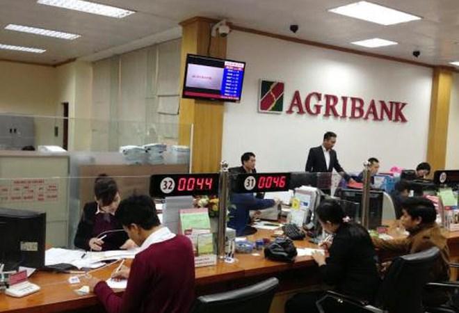 Agribank: Chuyển mình từ thành công tái cơ cấu