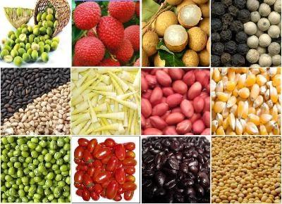 Agribank chung sức thúc đẩy xuất khẩu nông sản Việt Nam
