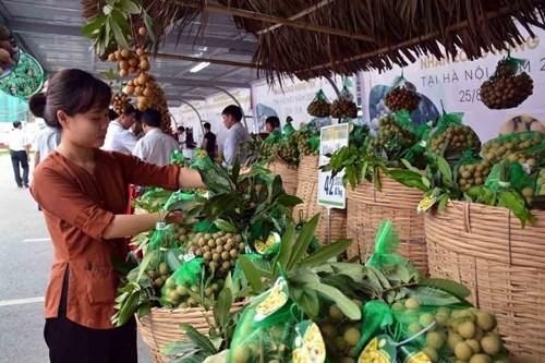 Phát triển thương hiệu nhãn lồng Hưng Yên tại Hà Nội