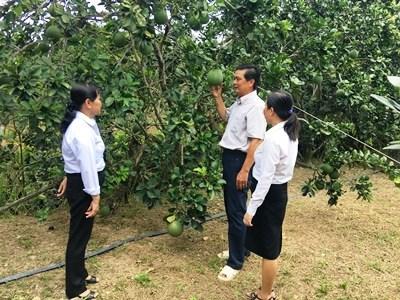 """Cùng nông dân Việt """"vươn ra biển lớn"""""""