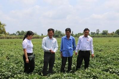 Vốn Agribank đã phát huy hiệu quả tại khu vực Tây Nam Bộ