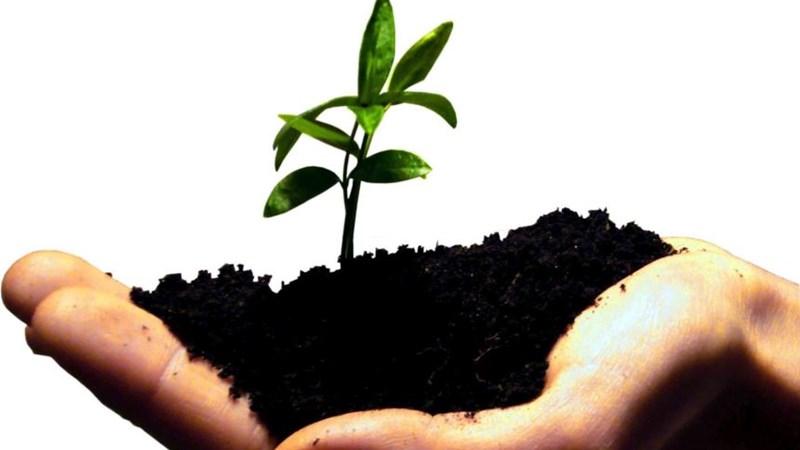 Khuyến khích tinh thần sáng tạo khởi nghiệp