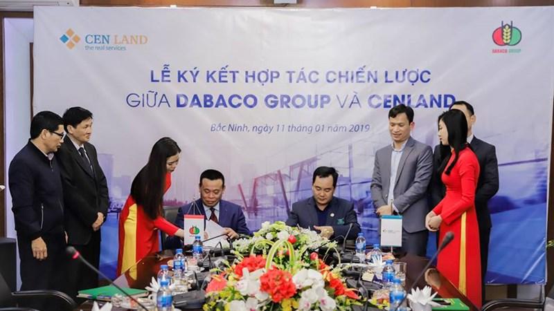 Cenland hợp tác chiến lược với Tập đoàn Dabaco Việt Nam