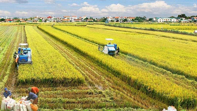 Một số vấn đề về thu hút đầu tư phát triển nông nghiệp ở Việt Nam