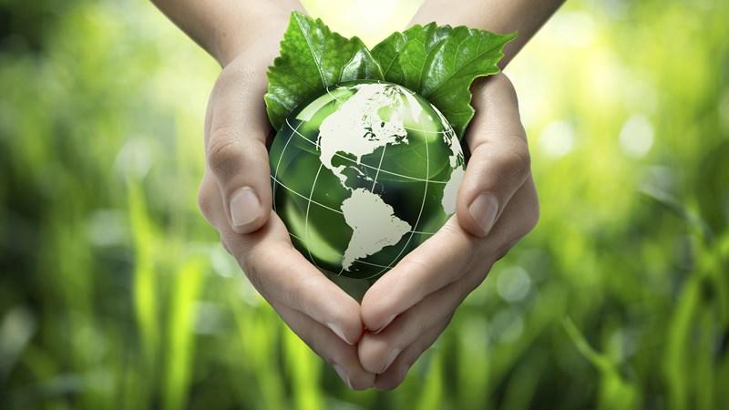 Thúc đẩy tiêu dùng xanh của các hộ gia đình Việt Nam hiện nay