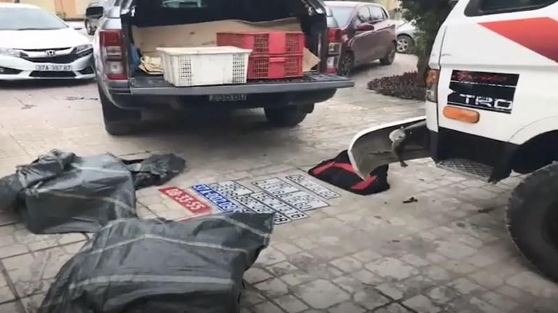 [Video] Cảnh sát bắt 4 nghi phạm vận chuyển động vật hoang dã