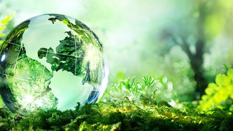 Thu hút đầu tư gắn với bảo vệ môi trường  tại TP. Đà Nẵng