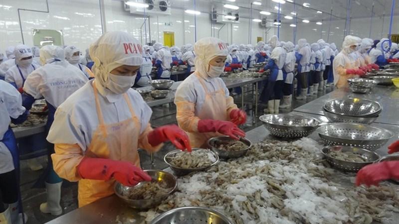 Hiệu quả tài chính của các tác nhân tham gia chuỗi giá trị tôm sú tại tỉnh Trà Vinh