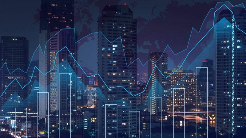 [Infographic] Tình hình đấu giá tháng 11/2018 tại HNX