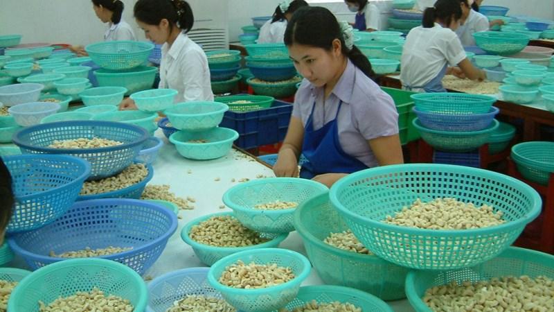 Bài toán phụ thuộc nông sản nhập
