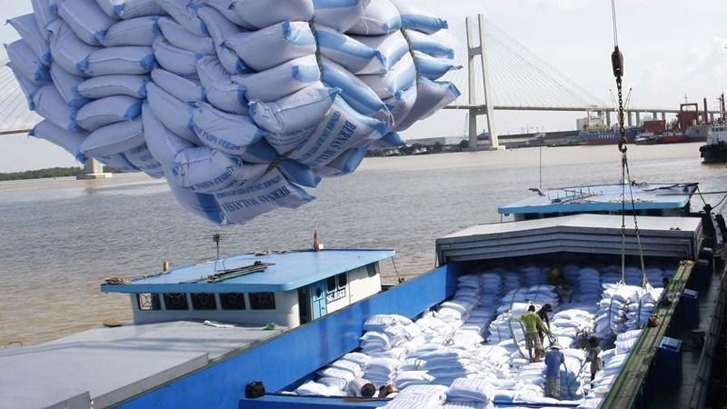 Xuất khẩu gạo: Không nên bỏ trứng vào một giỏ