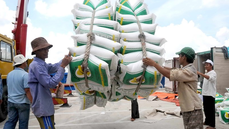 """Doanh nghiệp xuất khẩu gạo được """"cởi trói"""" để mở rộng thị trường"""