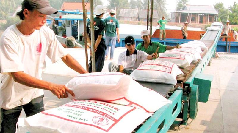 Tháo gỡ khó khăn cho xuất khẩu gạo