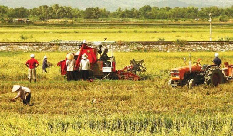Nhiều chính sách từ Ngân hàng Nhà nước hỗ trợ người nghèo và nông nghiệp