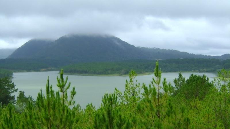 Lâm Đồng đầu tư hơn 510 tỷ đồng bảo tồn đa dạng sinh học
