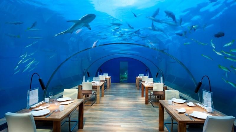 Chiêm ngưỡng những khách sạn dưới nước độc đáo nhất thế giới