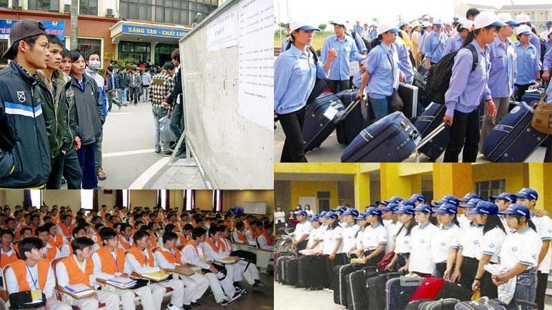 Thu hồi giấy phép của 46 doanh nghiệp xuất khẩu lao động