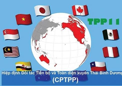 Hiệp định Đối tác toàn diện và tiến bộ xuyên Thái Bình Dương: Chiến thắng của sự tiến bộ