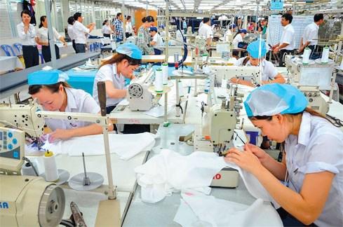 Hình thành những doanh nghiệp tham gia vào chuỗi giá trị sản xuất