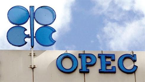 Chông gai đang chờ OPEC