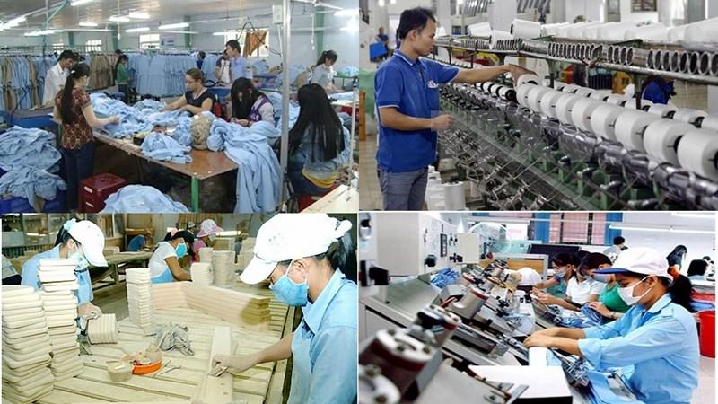Vai trò động lực của kinh tế tư nhân trong phát triển kinh tế Việt Nam