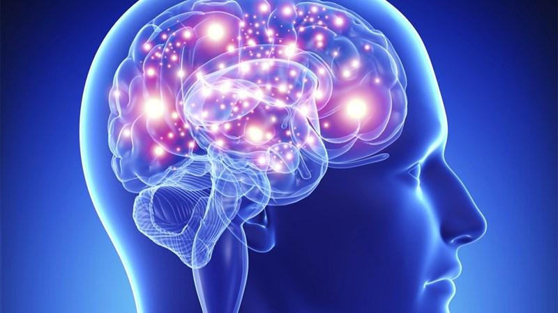 [Infographic] Bộ não điều khiển cơ thể bạn bằng cách nào?