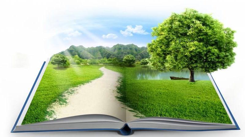 Phát triển kiểm toán môi trường ở Việt Nam
