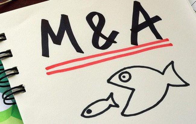 Thị trường M&A tương lai gần vẫn là cuộc chơi chính của đại gia ngoại