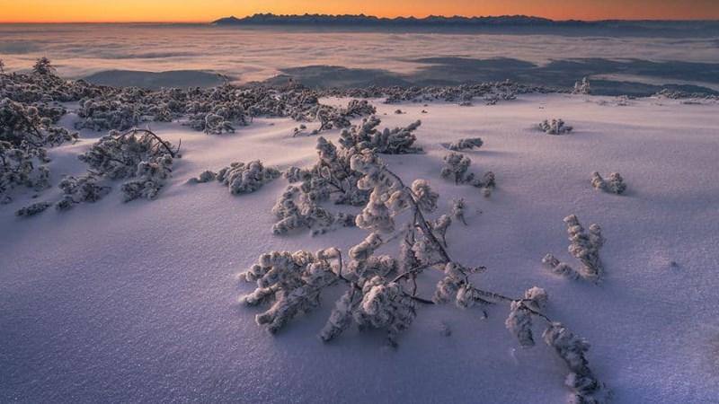 Tuyết trắng với mùa đông kỳ diệu Ba Lan