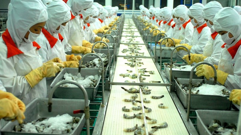Phương pháp phân tích chất lượng sản phẩm trong các doanh nghiệp thủy sản