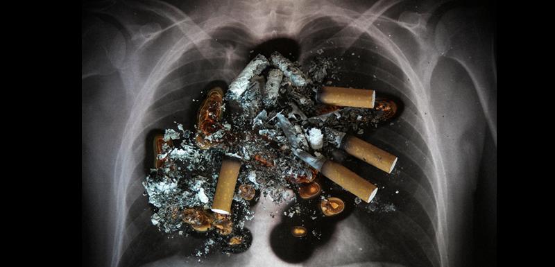 [Infographic] Khiếp đảm tác hại của thuốc lá trên cơ thể con người