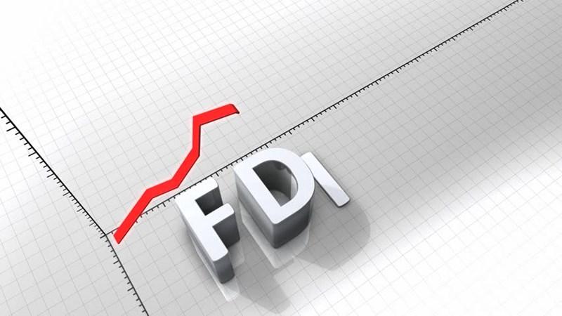 Chính sách bảo hộ đang tác động đến các doanh nghiệp FDI?