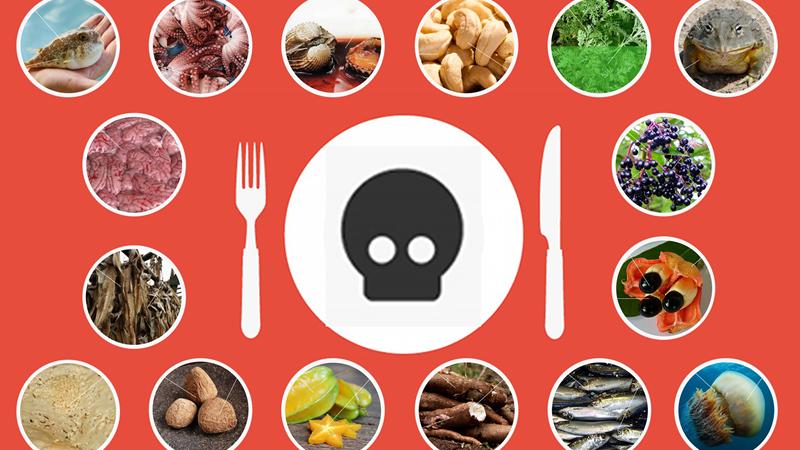 [Infographic] 17 món ăn nguy hiểm nhất trên thế giới