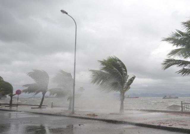 [Infographic] Bộ, ngành địa phương chủ động ứng phó với bão số 4