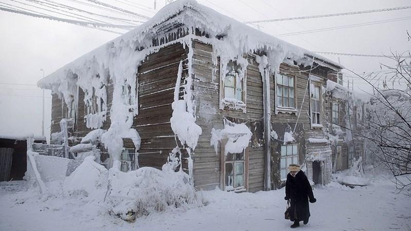 [Video] Khám phá cuộc sống ở những nơi lạnh nhất hành tinh