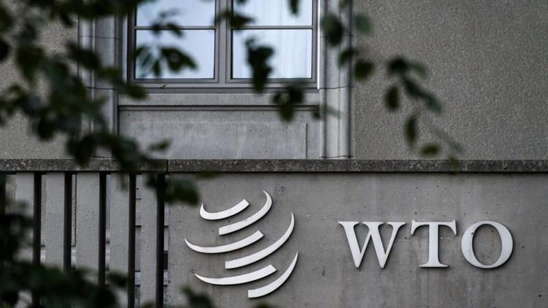 Cải cách WTO, chủ đề trọng tâm tại Hội nghị cấp bộ trưởng của WTO