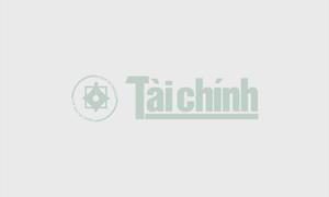 Xuất cấp gạo từ nguồn dự trữ quốc gia cho tỉnh Bình Định