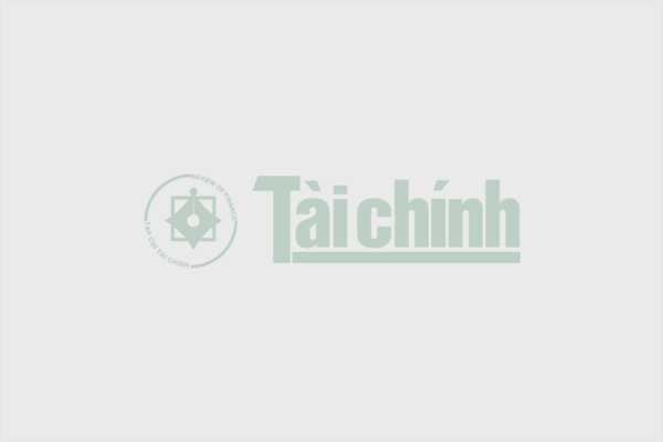 Xuất cấp gạo từ nguồn dự trữ quốc gia cho tỉnh Hà Tĩnh