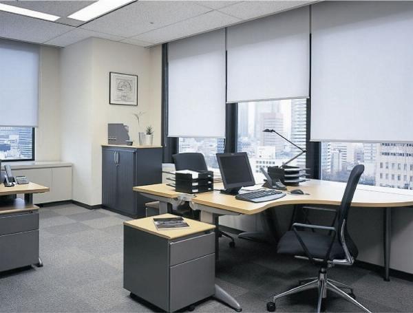 Các loại rèm cửa phù hợp với nội thất văn phòng - Ảnh 3