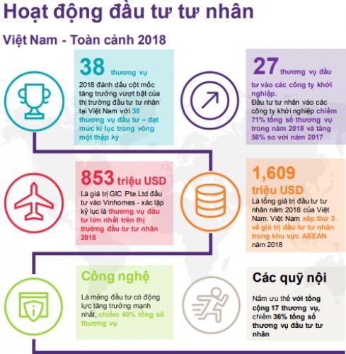 Đầu tư tư nhân vào Việt Nam đạt mức kỷ lục mới - Ảnh 4
