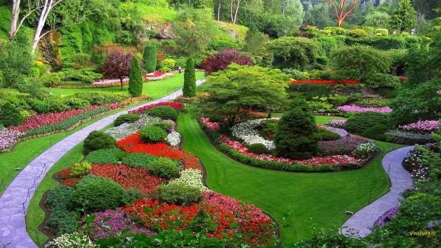 Những lợi ích khi thiết kế sân vườn - Ảnh 3