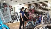 Thị trường xe đạp