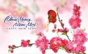 Bộ trưởng Đinh Tiến Dũng gửi Thư Chúc mừng năm mới 2021