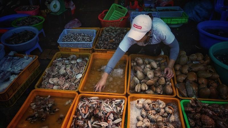 Chợ Lưới là địa chỉ bạn có thể tìm mua nhiều loại hải sản tươi sống với giá cả phải chăng. Ảnh NVL
