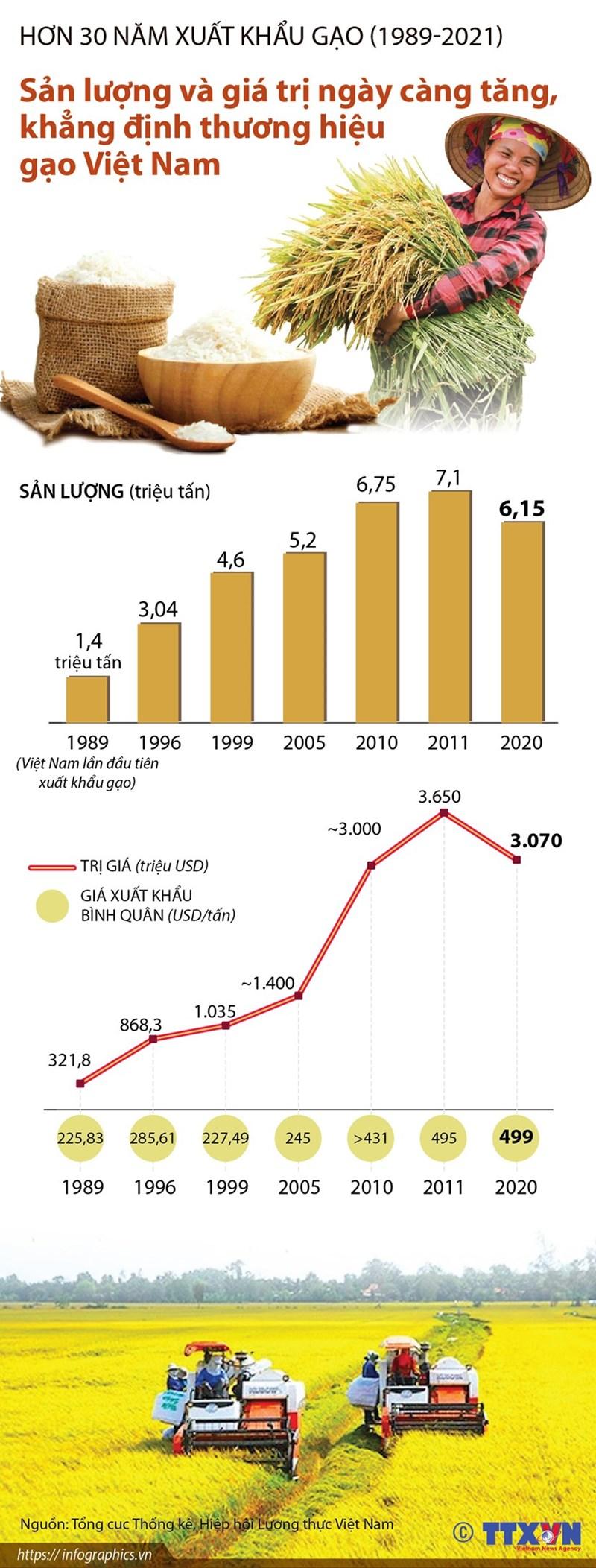 [Infographics] Sản lượng và giá trị gia tăng, khẳng định thương hiệu gạo Việt Nam - Ảnh 1