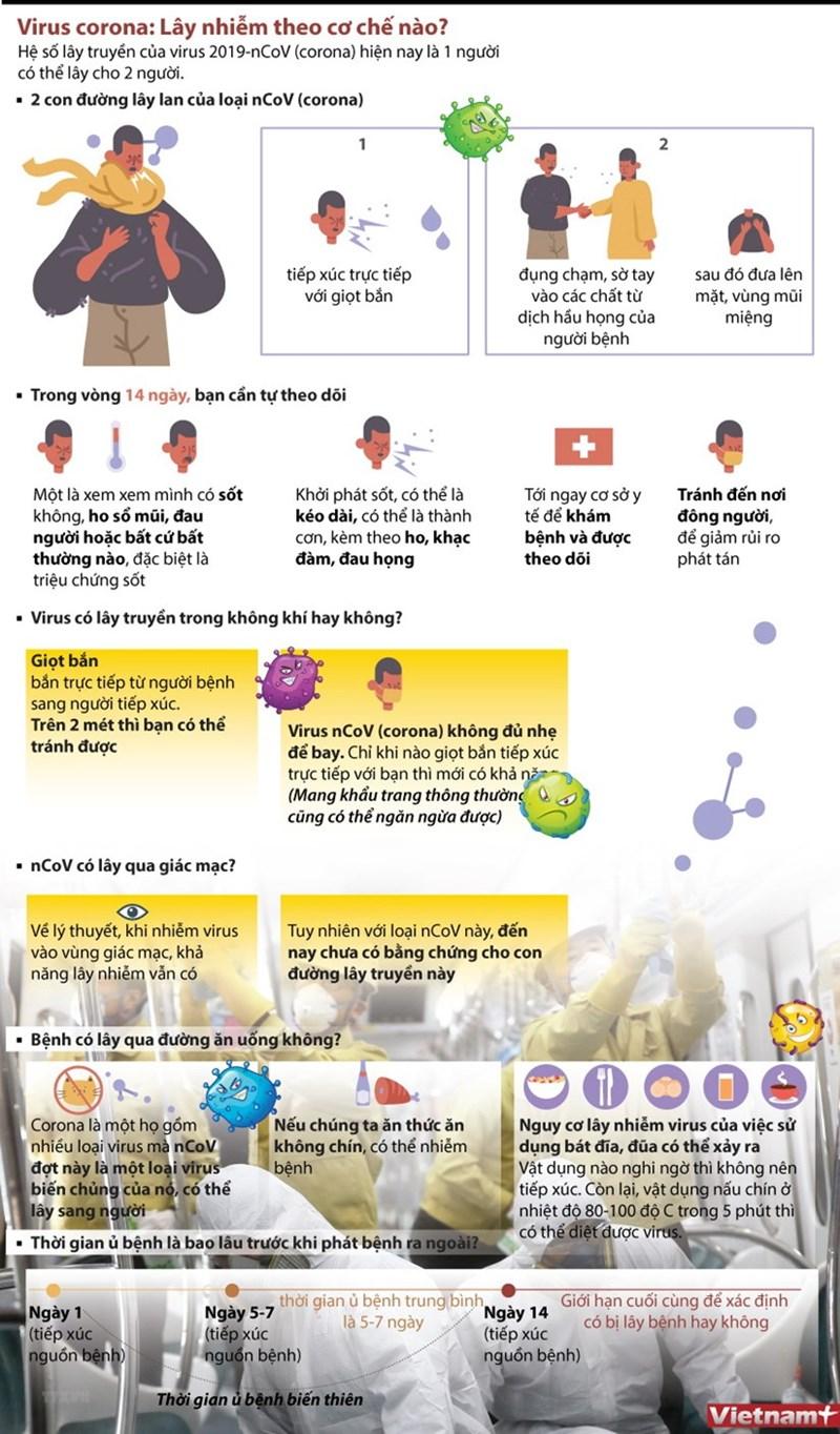 [Infographics] Virus 2019-nCoV lây nhiễm theo cơ chế nào? - Ảnh 1